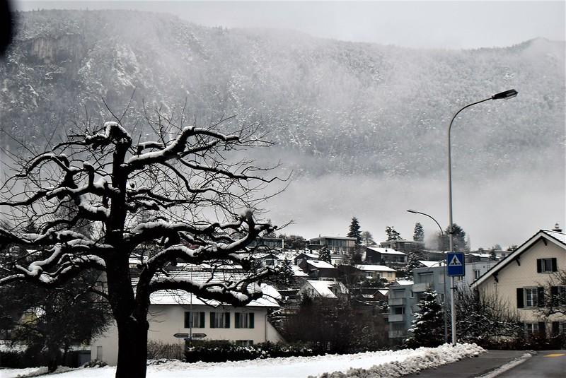 Feldbrunnen to Langendorf 06.02 (80)