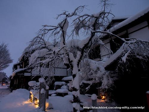 Snow day 1 #10