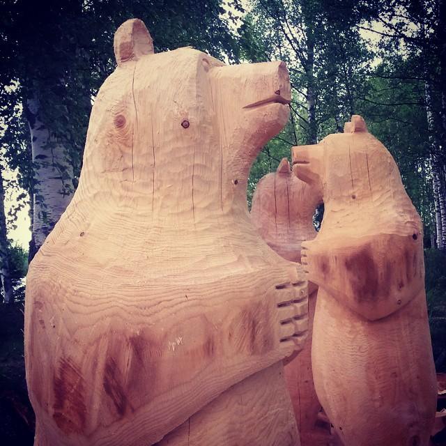 Karhut, Kokemäki, Suomi