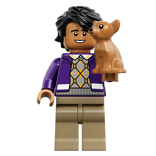 LEGO The Big Bang Theory Rajesh Ramayan Raj Koothrappali