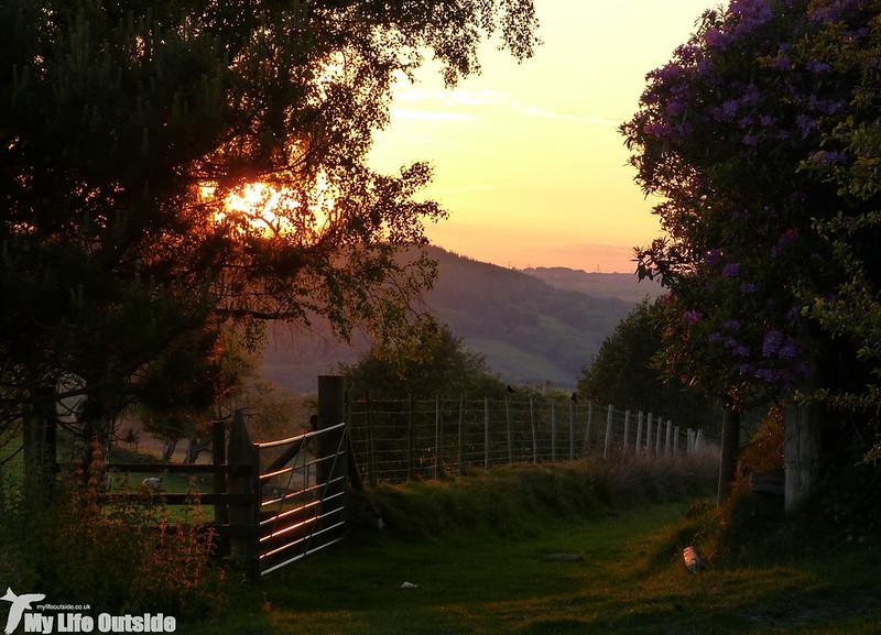 P1130285 - Sunset