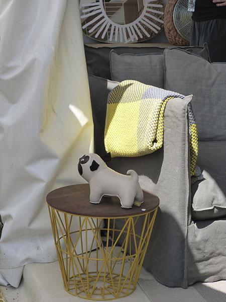 chien sur table