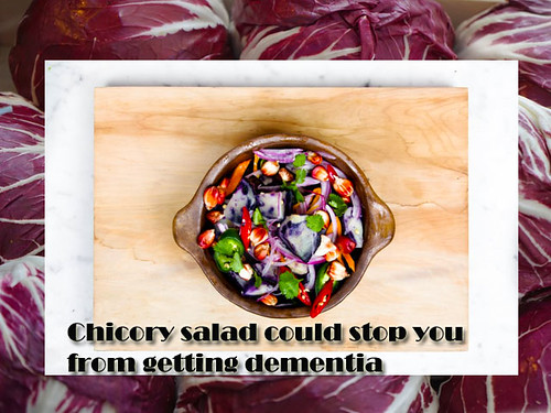 Chicory-salad-could-stop-dementia-disease