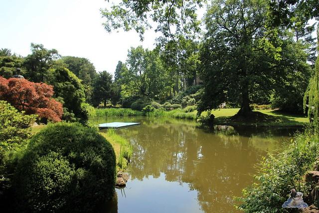 Tierpark Hagenbeck 04.07.2015  3