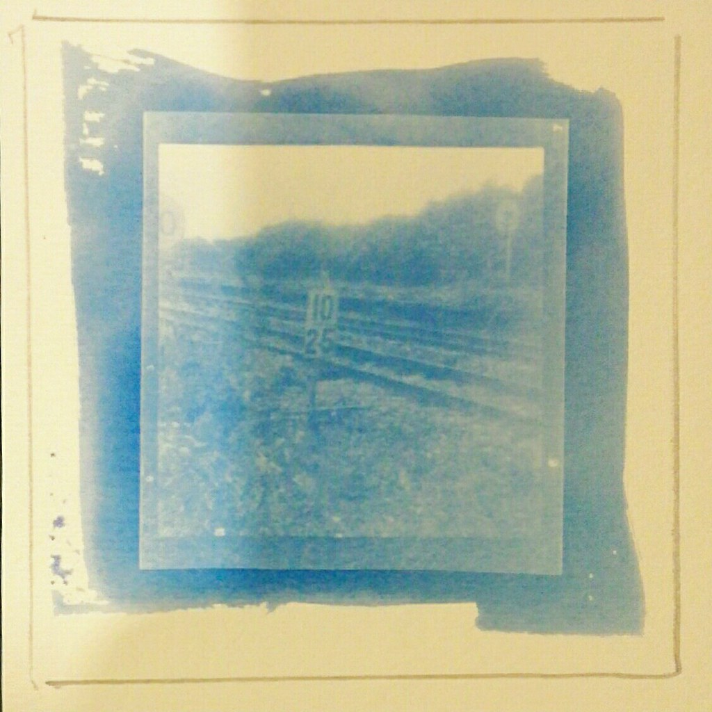 ... Cyanotype contact print - by Mr B\u0027s Photography