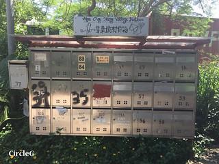 CIRCLEG 香港 遊記 筲簊灣 鶴咀 巴士 (19)