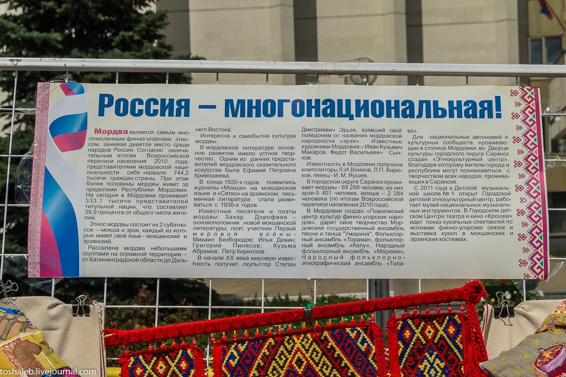 День_России_2015-15