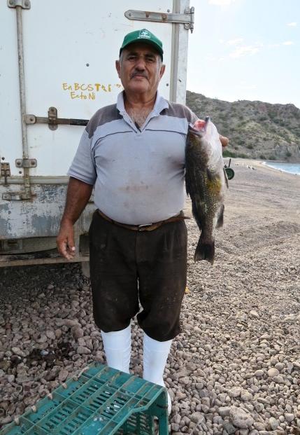 El peix que vaig comprar a un 'panguero ' per convidar a sopar els dos americans que m'havien convidat a esmorzar.