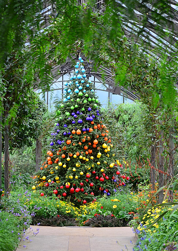 Mediterranean Garden Tree | pjpink | Flickr