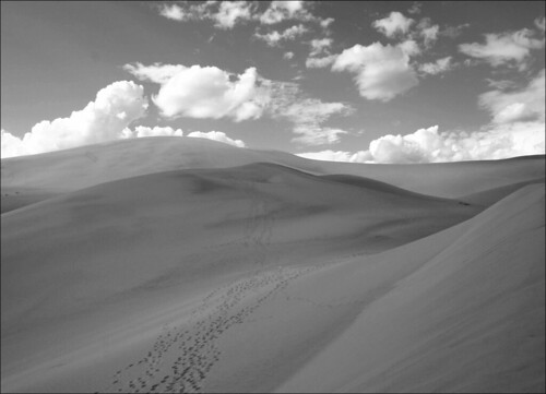20050905   Great Sand Dunes National Park, Colorado 097 | by Gary Koutsoubis