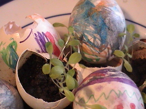 Easter Egg Planting 2 | by eren {sea+prairie}