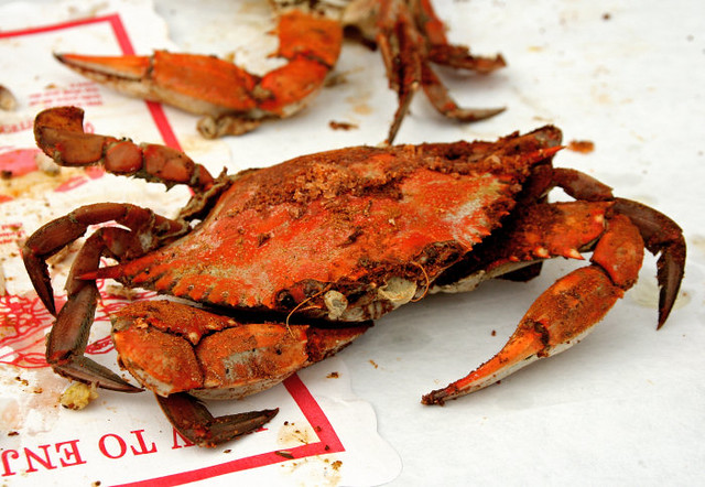 How To Steam Fresh Blue Crabs Have You Ever Enjoyed Here S