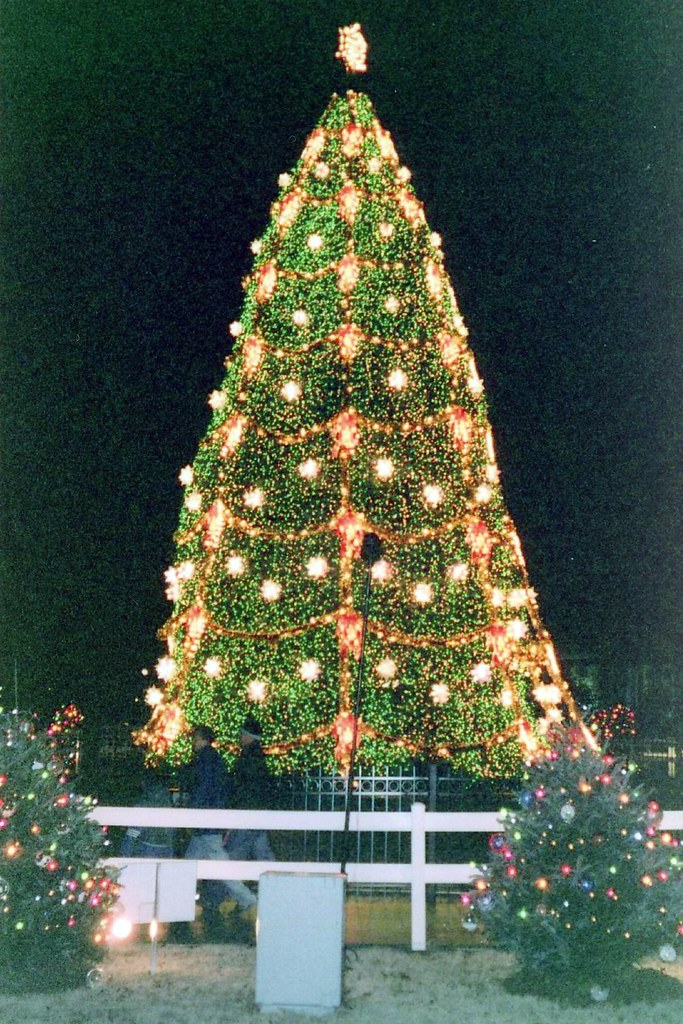 DC: National Christmas Tree | The National Christmas Tree is… | Flickr