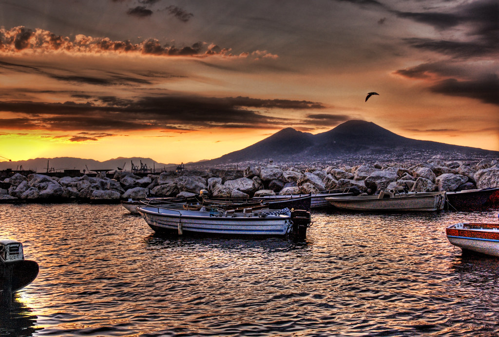 Morning Seagull Over Vesuvius