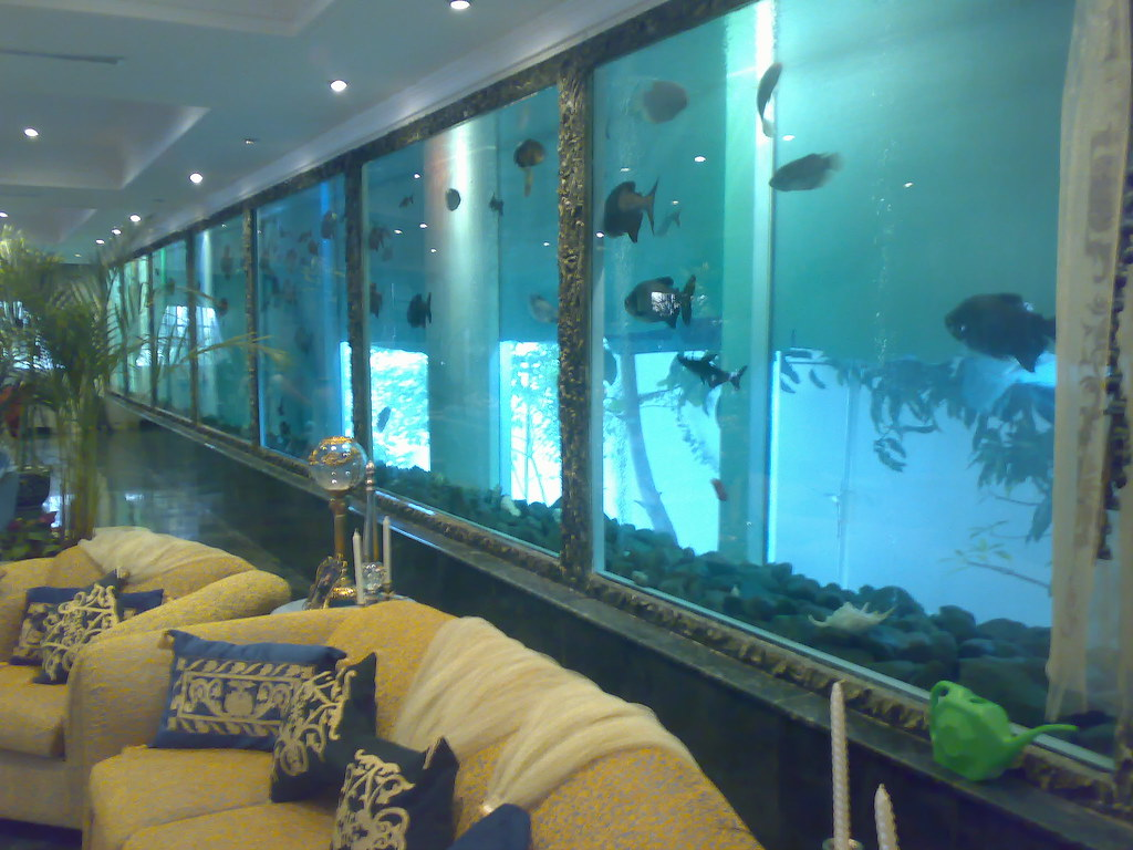 The biggest fish tank in a house in the world hay for Largest house plans in the world