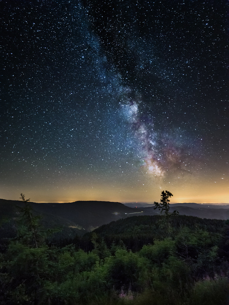 A Black Forest Night |...