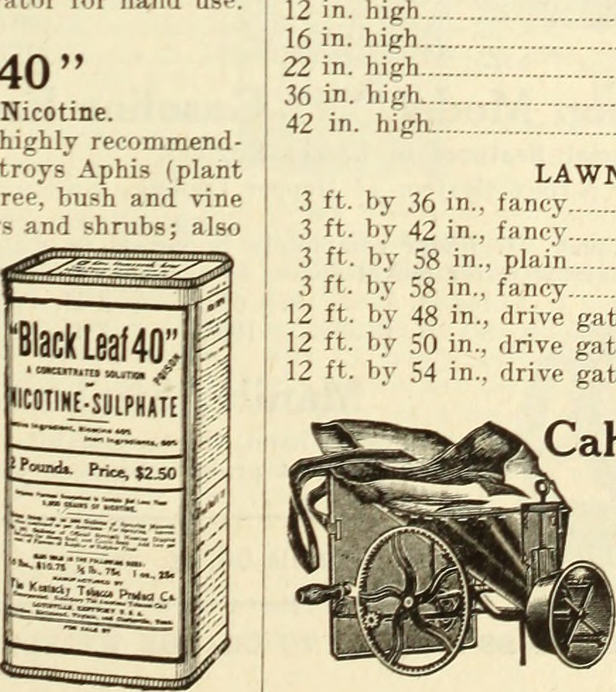 New Page 72 >> Image From Page 72 Of Bolgiano S New Catalog Of Capitol C Flickr