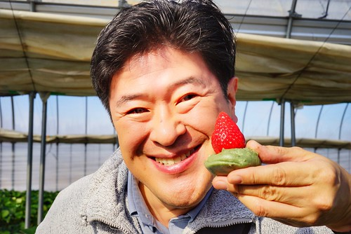 Chawanさん photo polepole farm strawberry picking 18