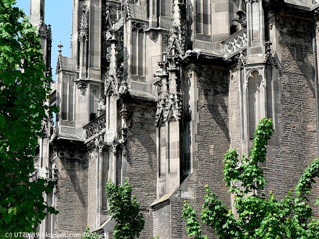 Münster Det1