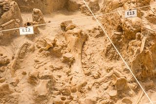 Grabungsgelände West Coast Fossil Park