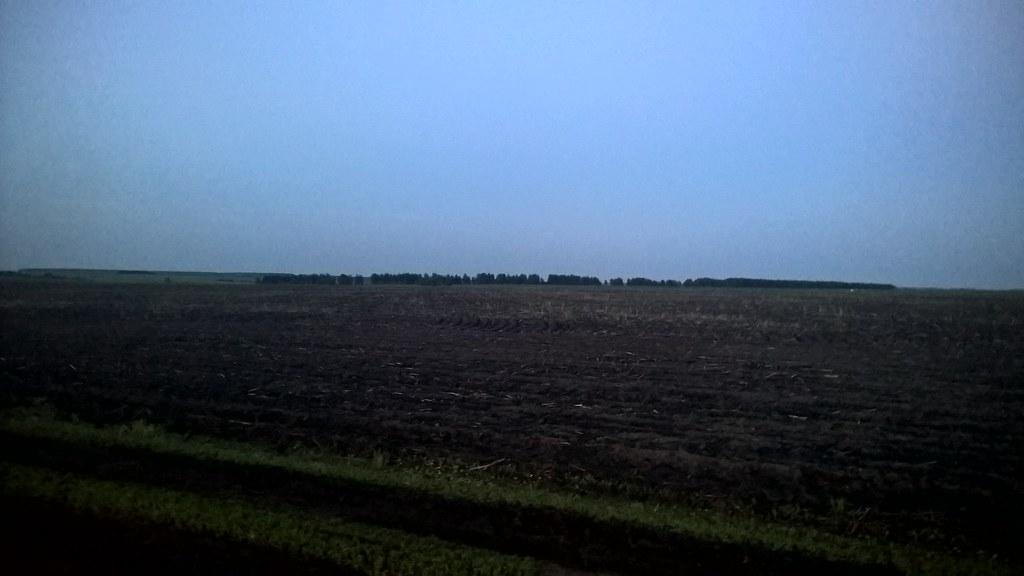 Вечерние поля