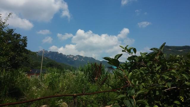 시골집 풍경 - 속리산