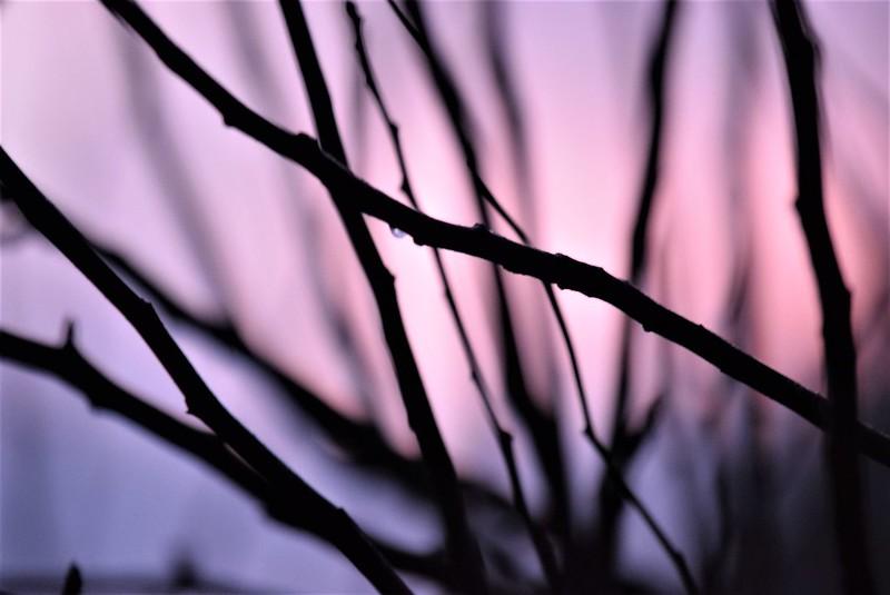Sunset 24.12 (11)
