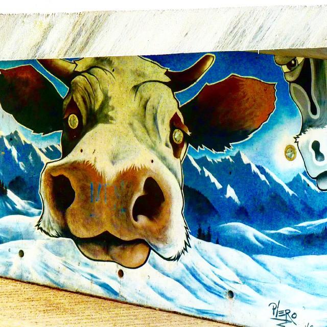 La Vache Hallucinee Graff Graffiti Graffitiart Cow S Flickr