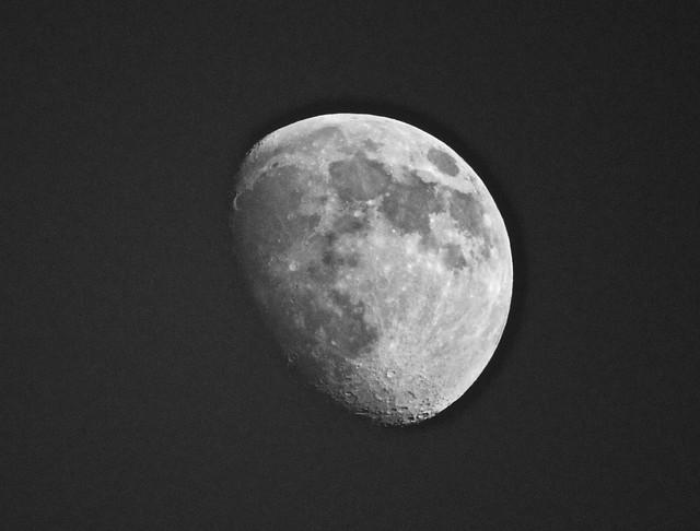 Moon IMG_2677