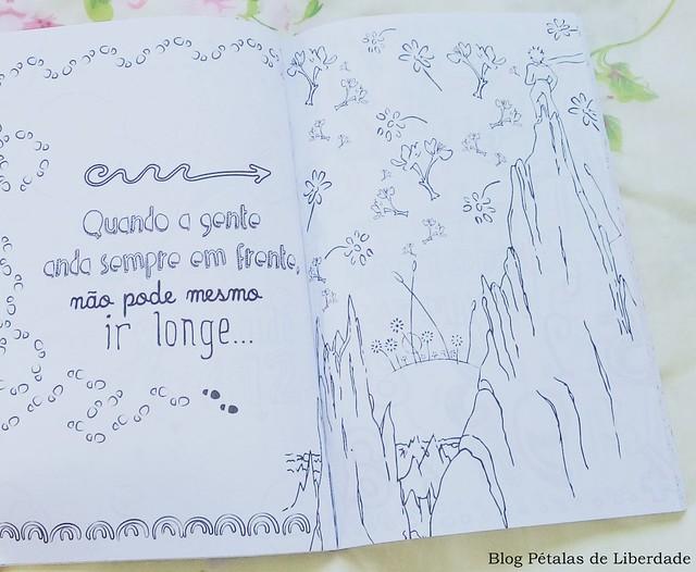 livro, o-pequeno-principe-para-colorir, ilustração, quote