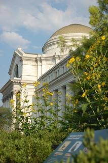 Smithsonian Gardens 1