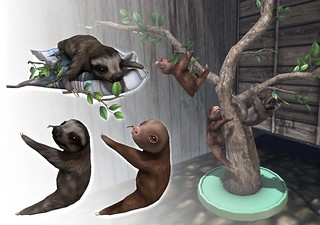 JIAN Baby Sloth Collection (FaMESHed) | by [JIAN]