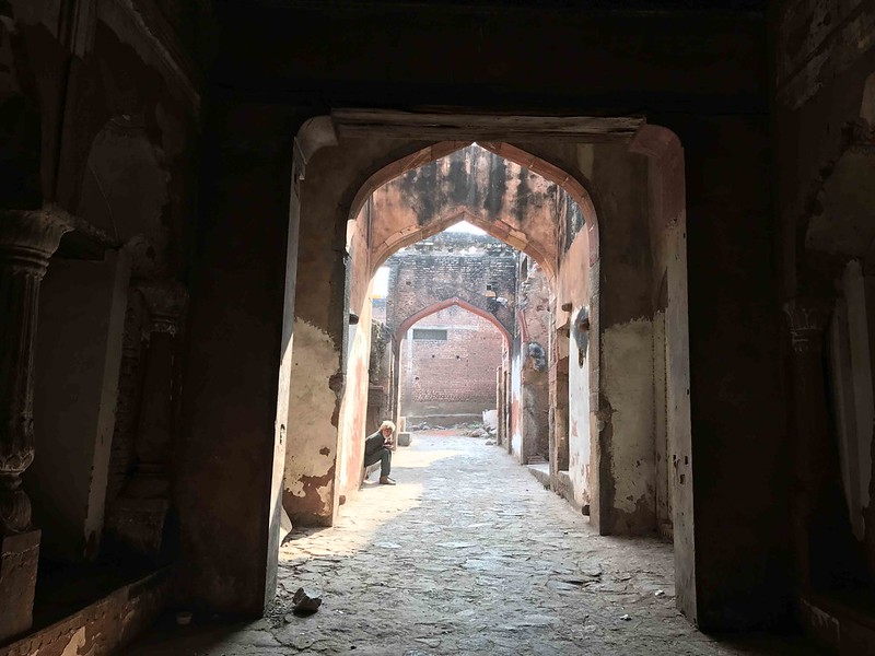 City Monument - Delhi's Vanishing Ruins, Mehrauli