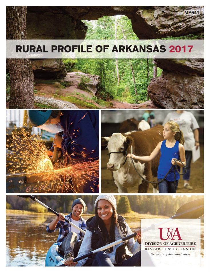 2017 Rural Profile Cover