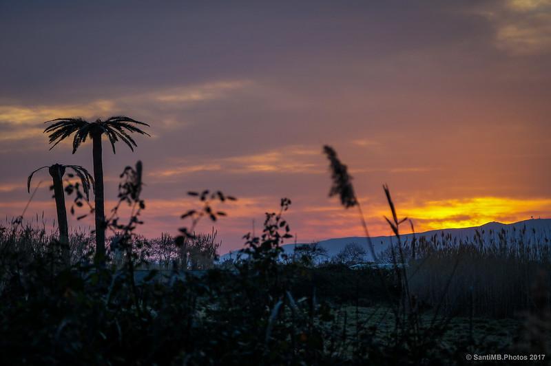 Crepúsculo en Cal Tet