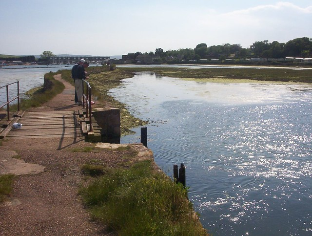 Fishing for crabs at st helen 39 s causeway matthew for Chatfield fishing report