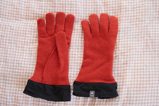 My gloves | by T.W. Iga