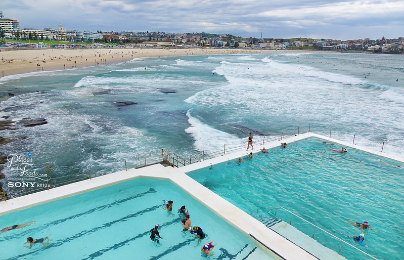 bondi iceberg sea pools beach overview