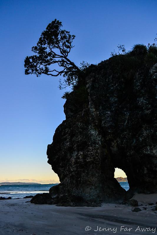 Opera Point, Coromandel, New Zealand.