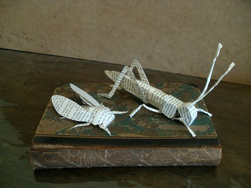 Book Page Sculpture - Migratory Locust and Cicada by Clara Maffei