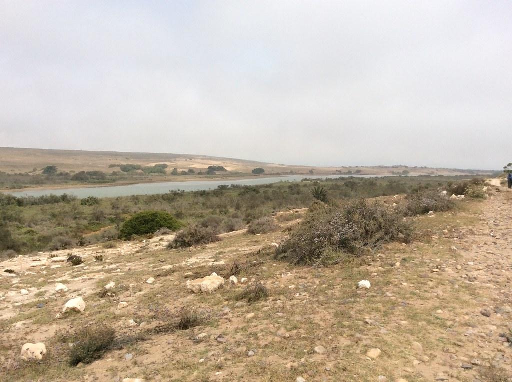 Souss Massa nature reserve  Morocco