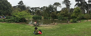 SF Botanical Garden - Waterfowl Pond