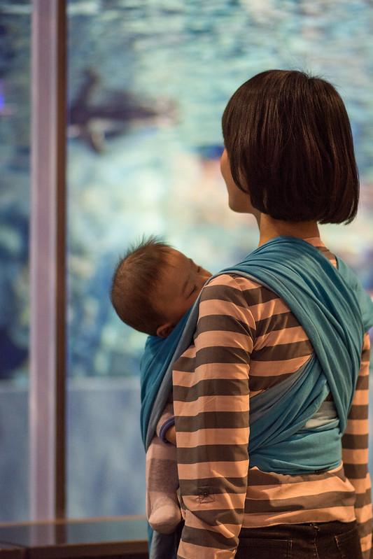 水族館で寝てしまった子ども