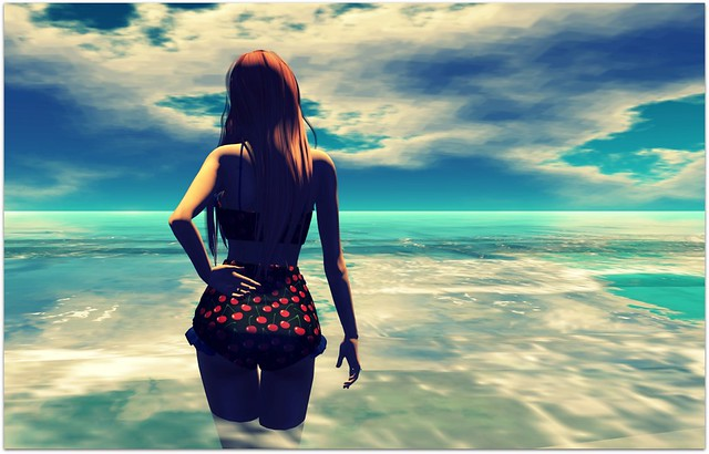 Vamos a la playa 2015