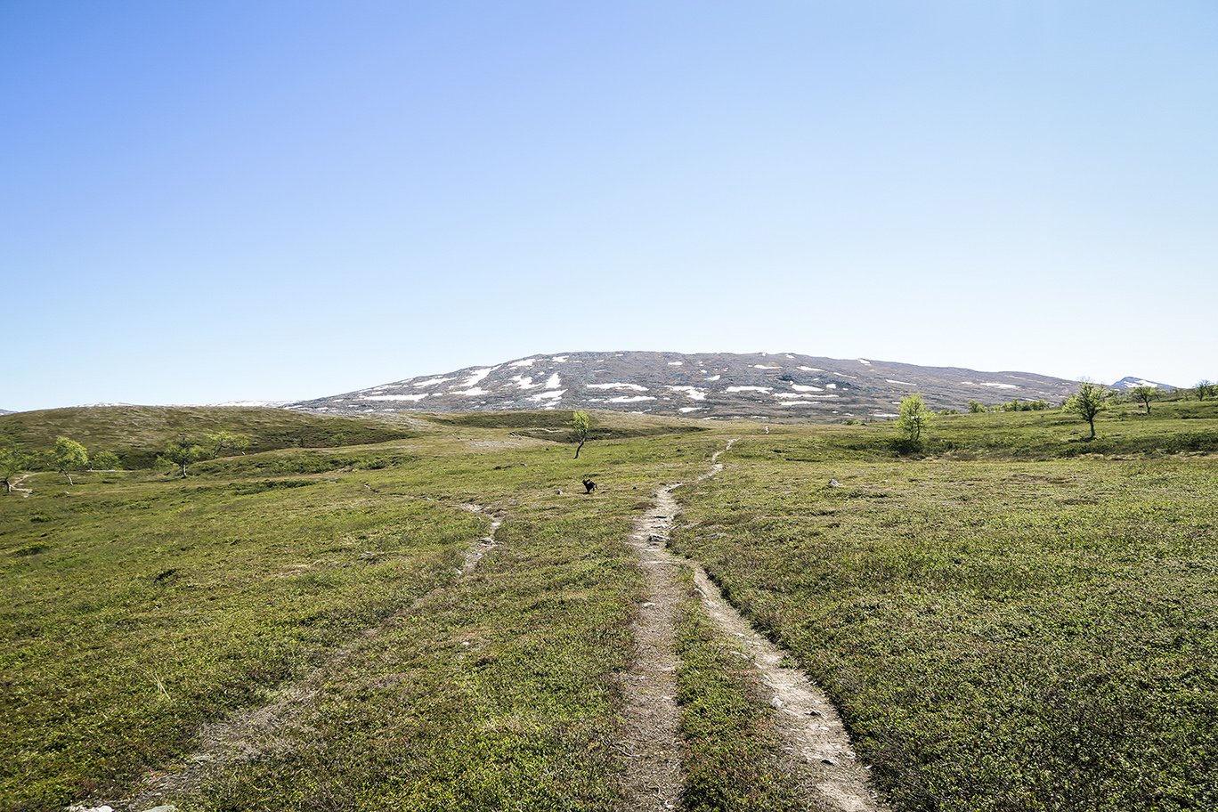 Pyramiderna och Issjödalen IMG_2869