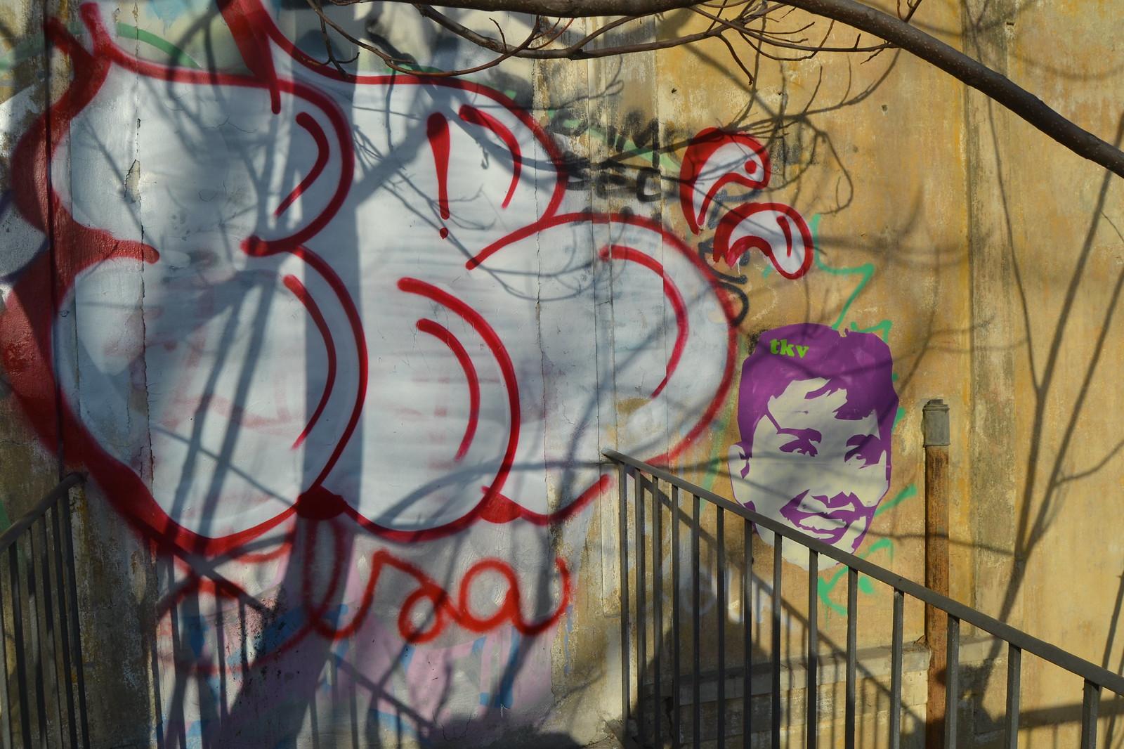 Torino. 22/01/2017 fotos de zeroanodino para URBANARTIMAÑA