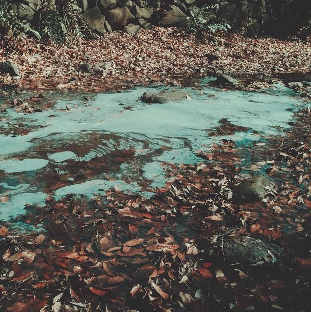 River freezes