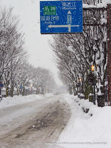 Snow Day 2 #05
