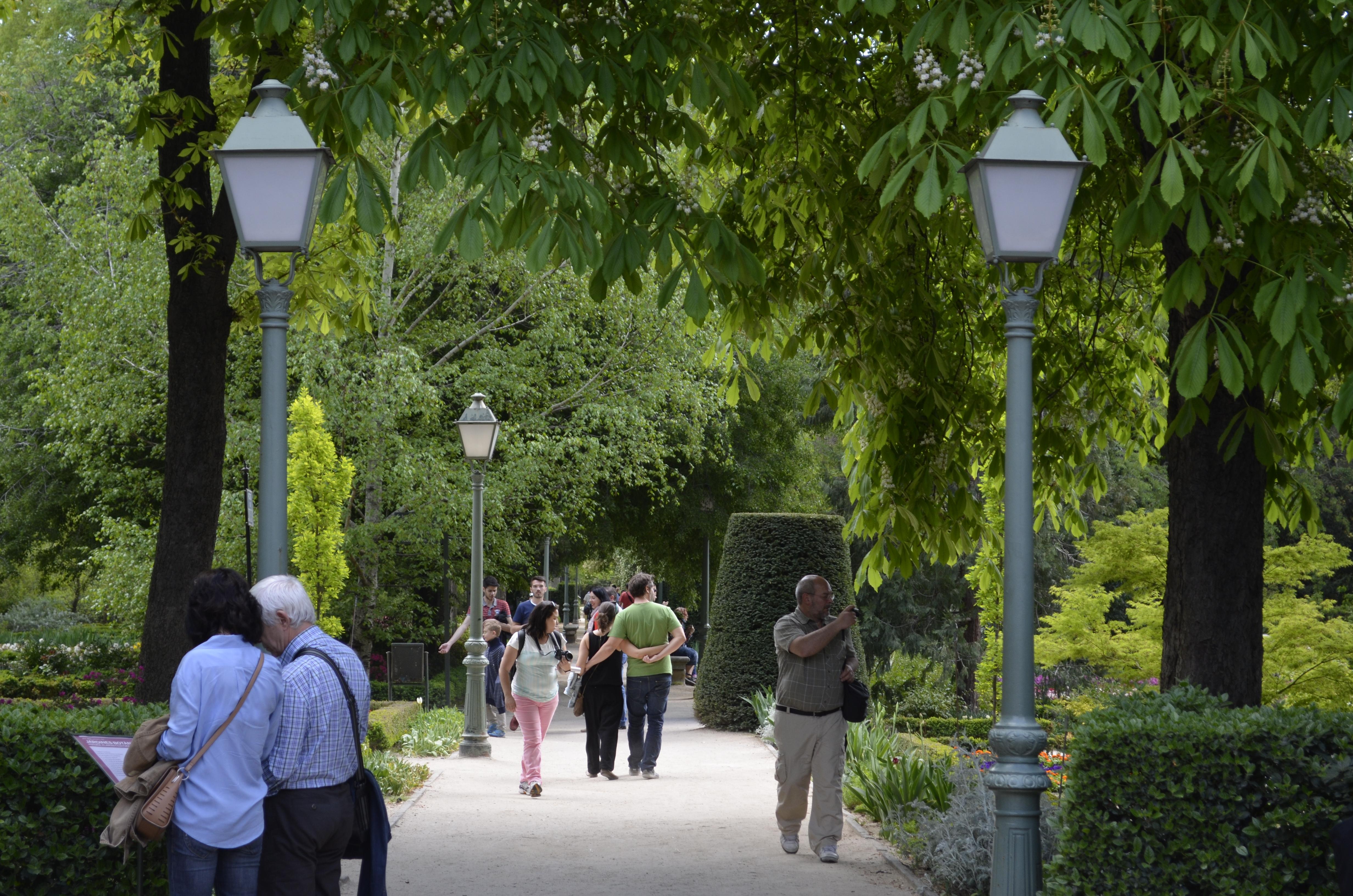 Real Jardim Botânico Madrid