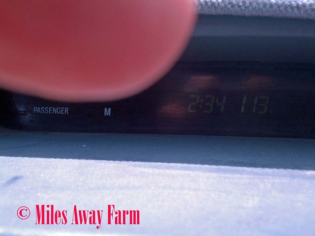 Walla Walla 113 degrees
